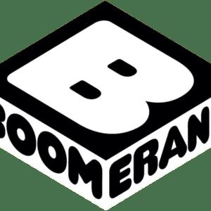 Boomerang Premium Account (LIFETIME Guaranteed)